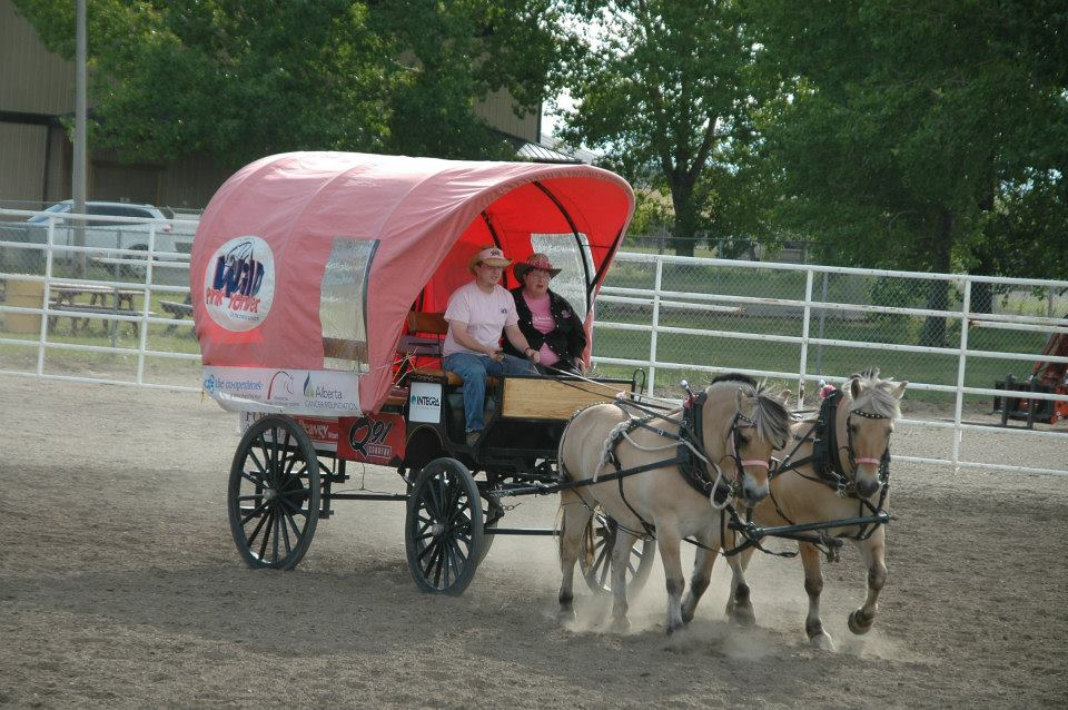 Wild Pink Yonder brings the Dog & Pony Show to Sherwood Park this weekend!