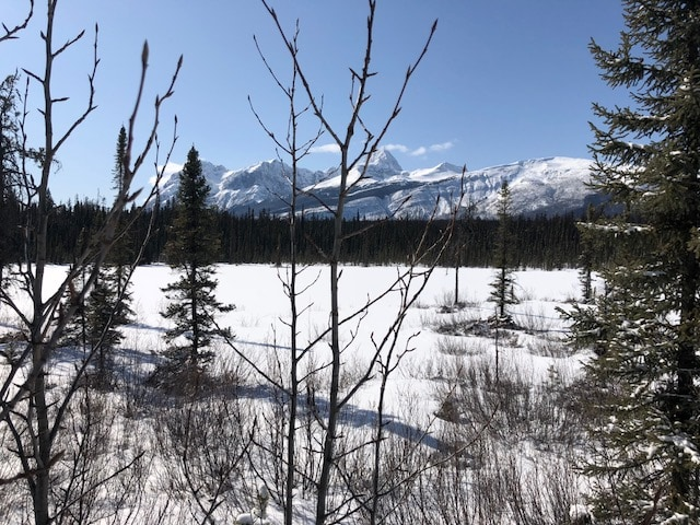 Exploring Jasper does not have to cost a lot of money!